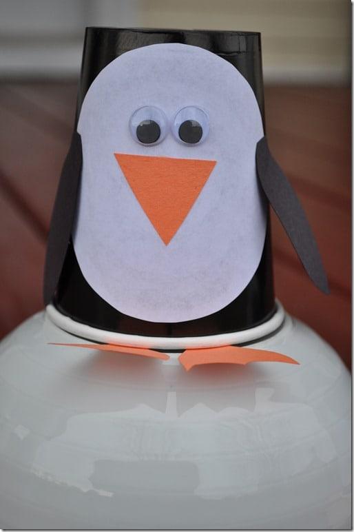 B penguin