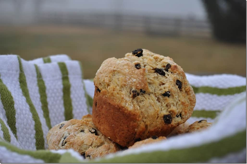 Irish Soda Bread Muffins 2
