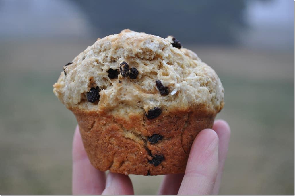 Irish Soda Bread Muffins 4
