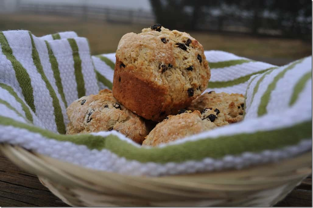 Irish Soda Bread Muffins