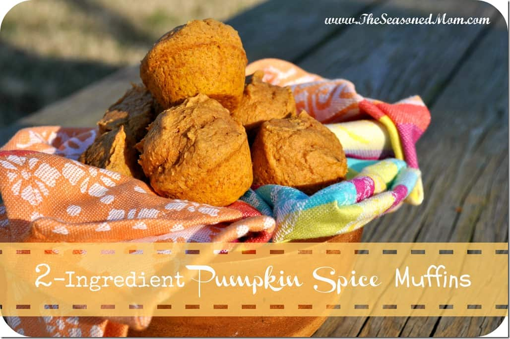 Ingredient Spice Cake And Pumpkin Recipe