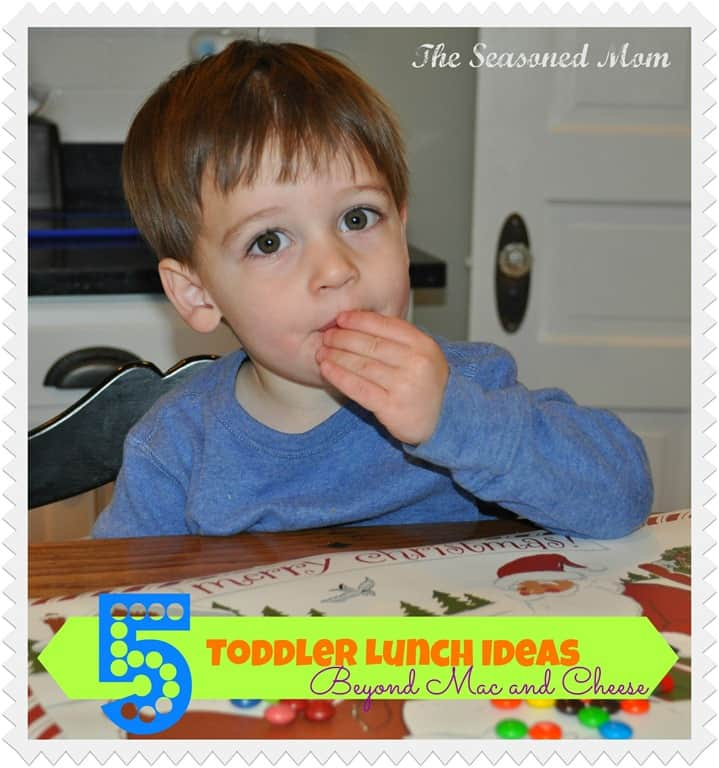 5-Toddler-Lunch-Ideas.jpg