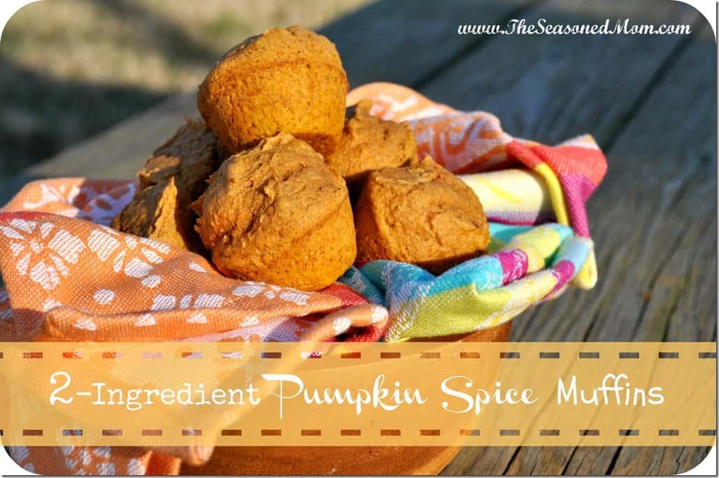 2-Ingredient Pumpkin Spice Muffins