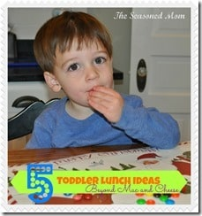 5 Toddler Lunch Ideas