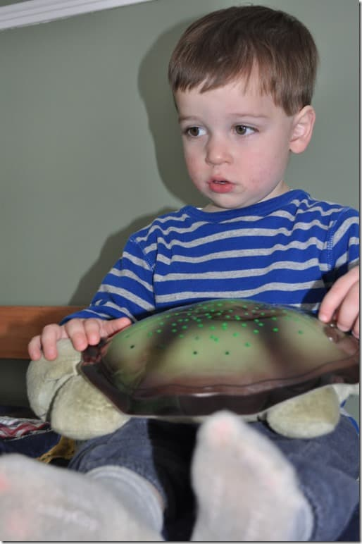 C with turtle