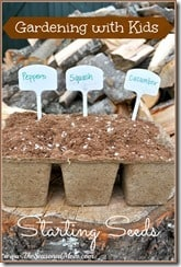 Gardening with Kids Starting Seeds
