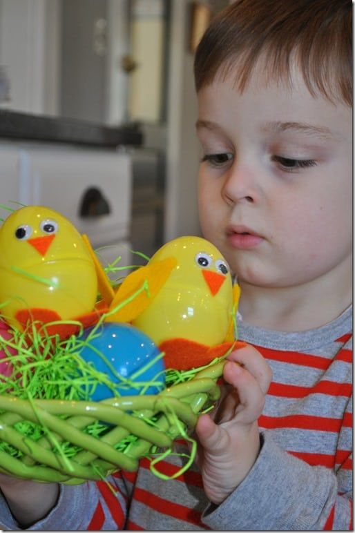 Gibbs with Easter Egg Chick