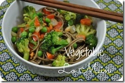 Vegetable Lo Mein 2