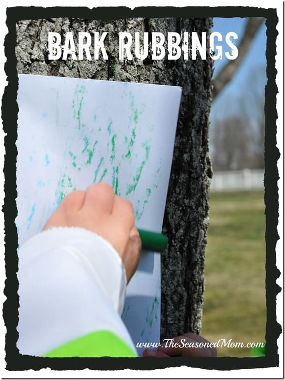 Bark Rubbings