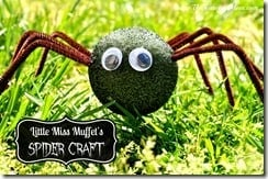 Little Miss Muffet's Spider Craft