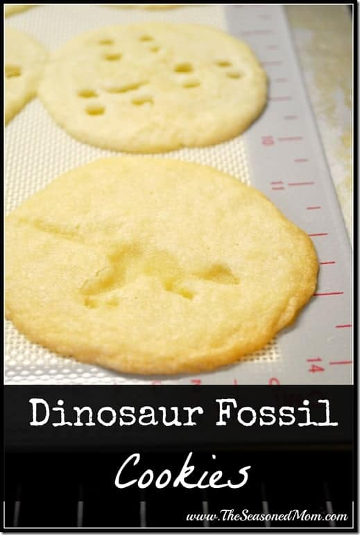 Dinosaur Fossil Cookies - The Seasoned Mom