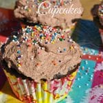 Skinny Double Chocolate Cupcakes