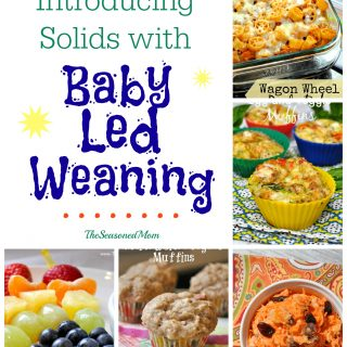 Guest Post: Introducing Solids with Baby Led Weaning
