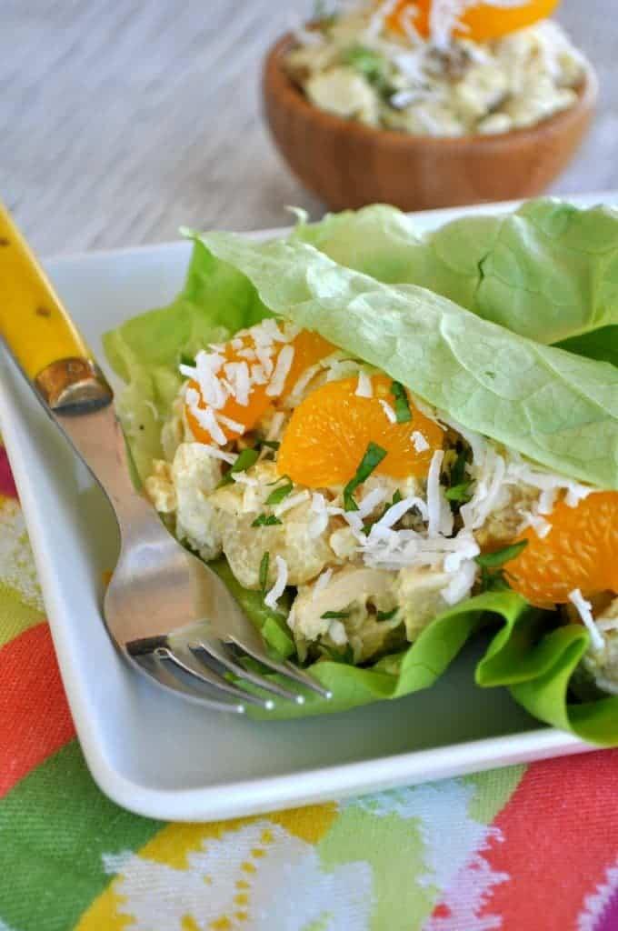 Skinny Polynesian Chicken Salad 5