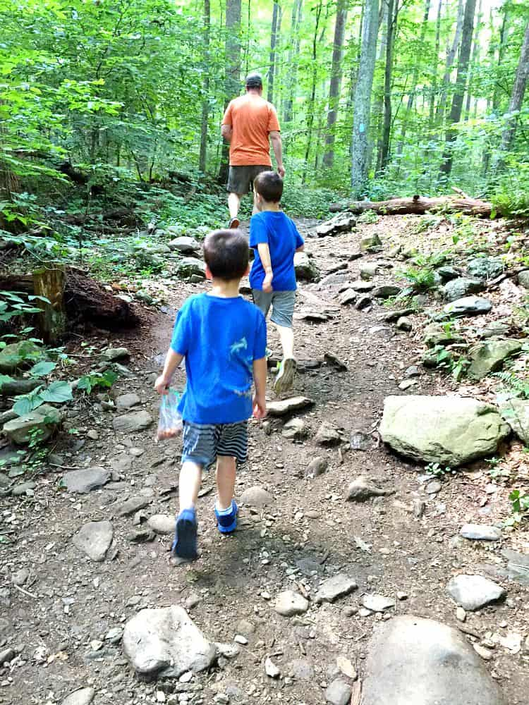 Boys Hiking