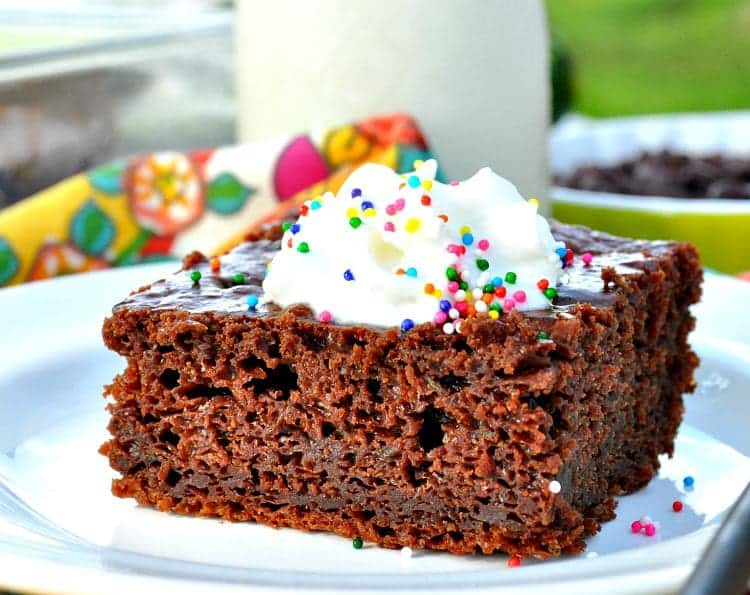 Greek Yogurt Chocolate Zucchini Cake 8
