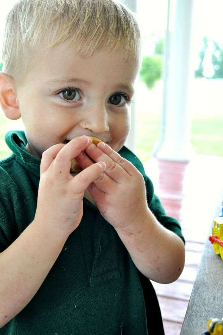 Graham Cracker Blender Mini Muffins 10