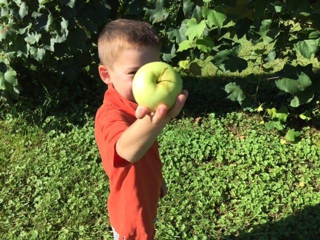 A boy holding an apple