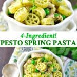 Long collage of chicken pesto pasta