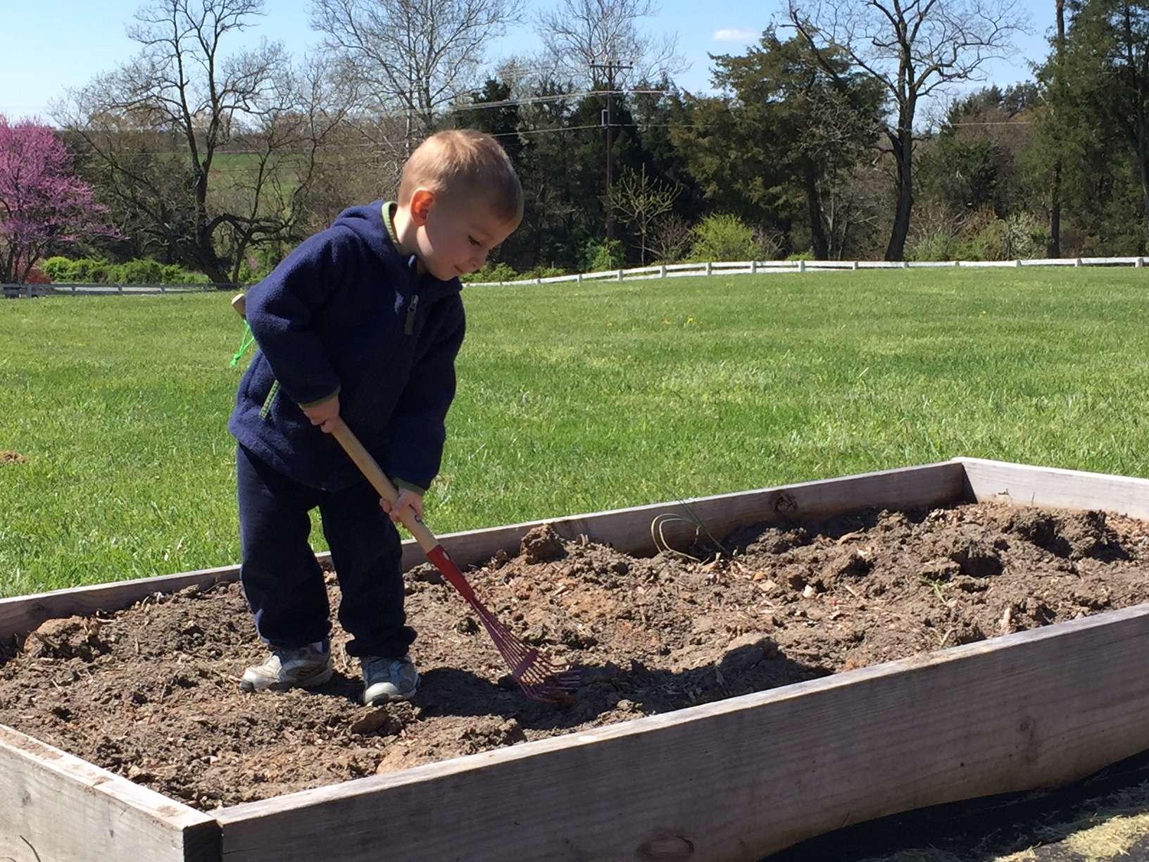 A small boy doing gardening