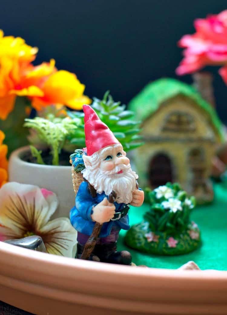 Indoor Fairy Garden 5