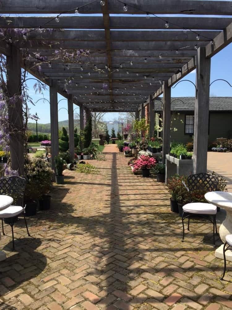A shot of a long pergola in a garden center
