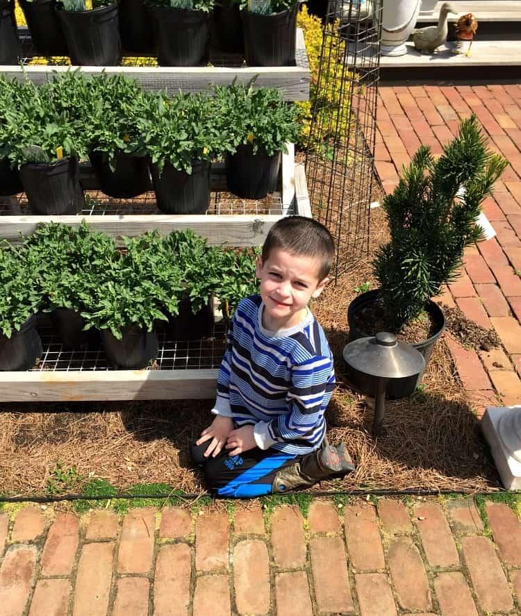 A boy kneeling down next to plants