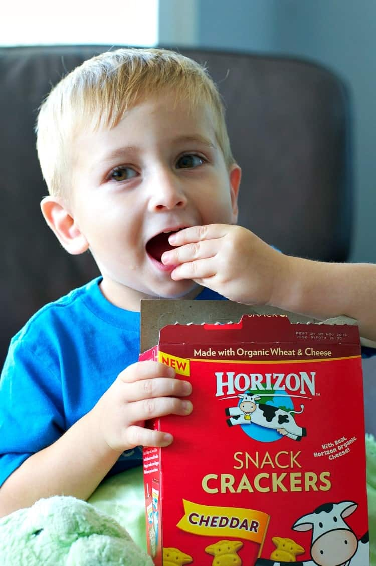 A small boy eating some Horizon organic cheddar snacks