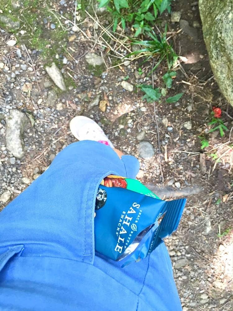 Sahale Snacks in Pocket