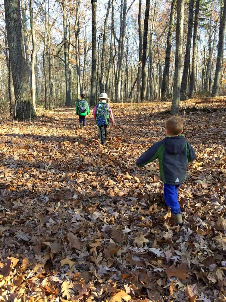boys-hiking-woods