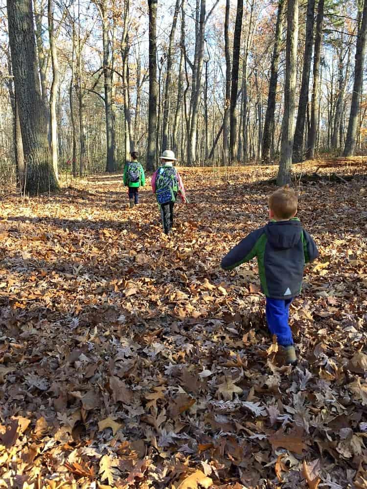 boys-hiking-woods