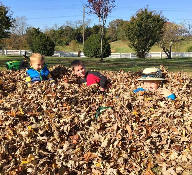 boys-in-leaves