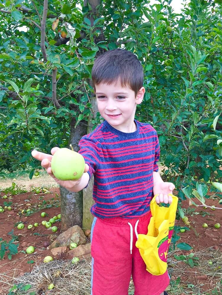 casey-with-apple