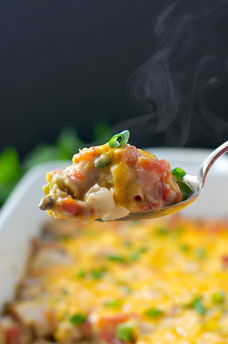 A close up of a spoonful of ranch chicken casserole