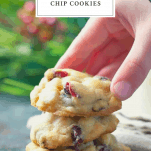Hand picking up christmas cookies with text box title at top