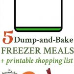 5 easy Dump-and-Bake Freezer Meals that you can assemble in minutes!