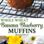 A collage image of whole wheat banana muffin with blueberries