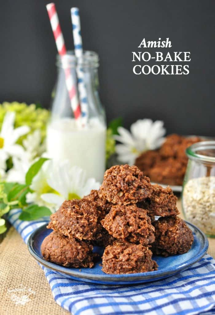 Amish No Bake Cookies + a Last Summer Hoorah!
