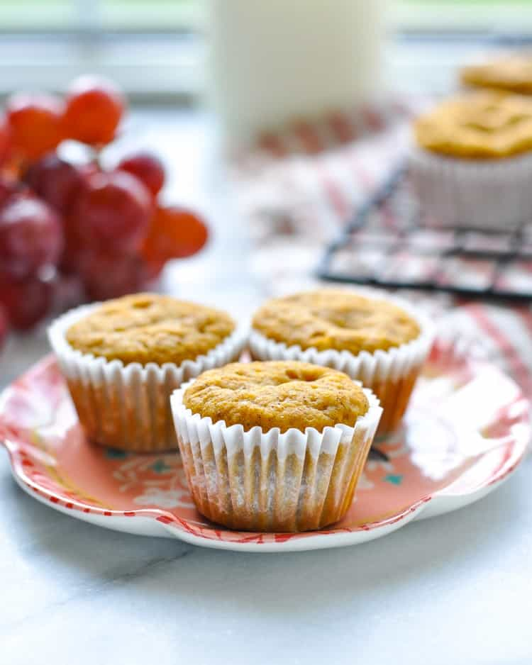 A close up of three healthy pumpkin muffins on a small plate