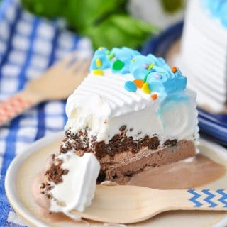 End-of-Summer Ice Cream Cake Party Play Date!
