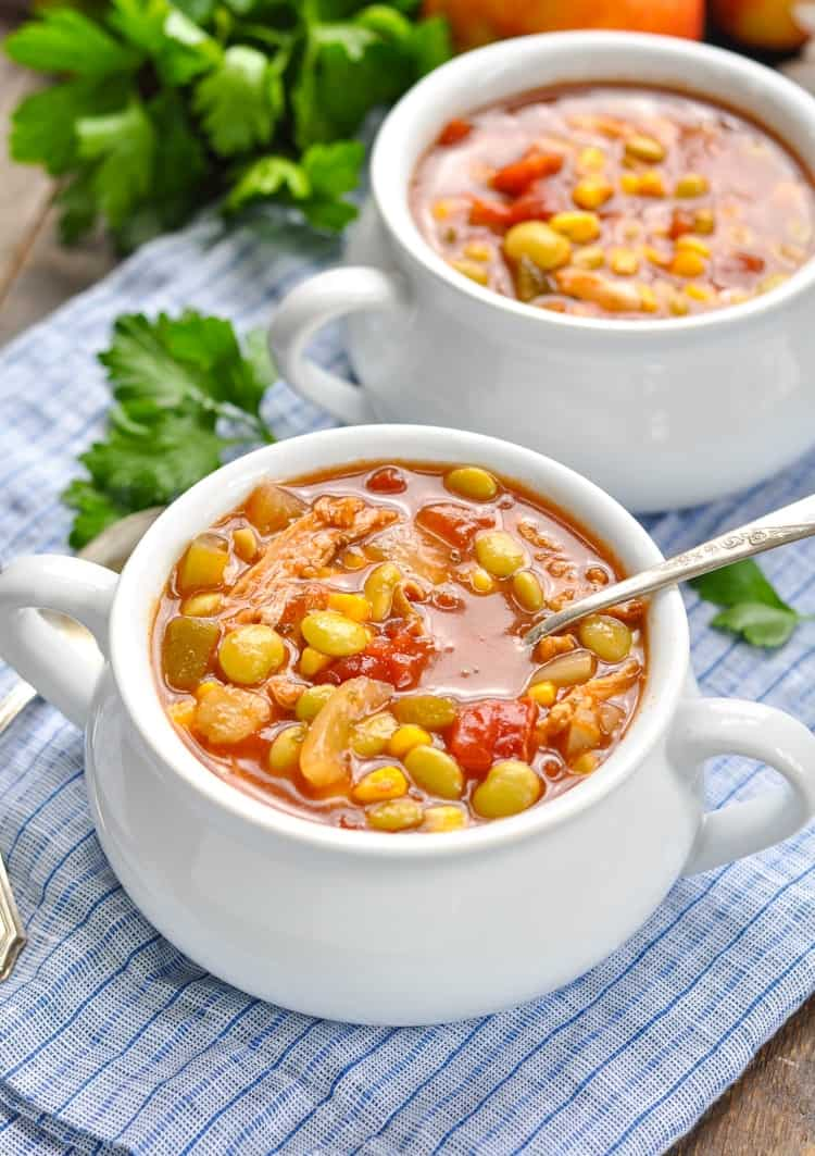 A close up of Slow Cooker Brunswick Stew in a bowl with a spoon