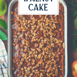 Overhead shot of a pan of fresh apple cake with caramel sauce and text title overlay