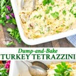 Long collage of Dump and Bake Turkey Tetrazzini