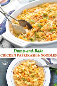 Long collage of Chicken Paprikash with Noodles