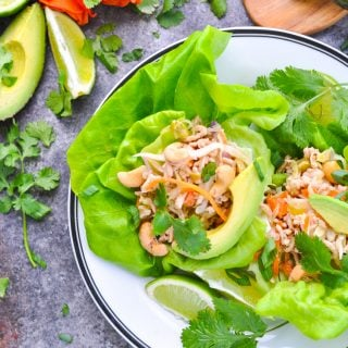 Close overhead photo of Asian Turkey Lettuce Wraps on a plate with garnishes at the side