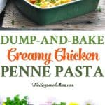 A dump-and-bake creamy chicken penne pasta casserole is loaded with vegetables and topped with cheese for an easy dinner!