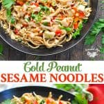 An easy and healthy dinner recipe that's a one pot meal are these Chinese Peanut Sesame Noodles