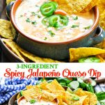 Long collage image of queso dip
