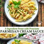 Long collage of Penne with Prosciutto Parmesan Cream Sauce