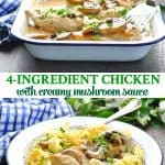 Long collage of 4 ingredient chicken with creamy mushroom sauce